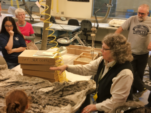Sally Shelton of the SD Mines Museum of Geology gives a behind-the-scenes tour of the James Martin Paleontology Laboratory during National Museum Day. Photo Date: Sep. 22, 2018.