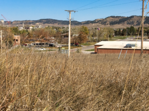 Some dry and cured grasses in a field near Rapid City show that even though summer's heat is over, wildfire danger can continue to be high heading into winter. Photo Date: Oct. 19, 2018.