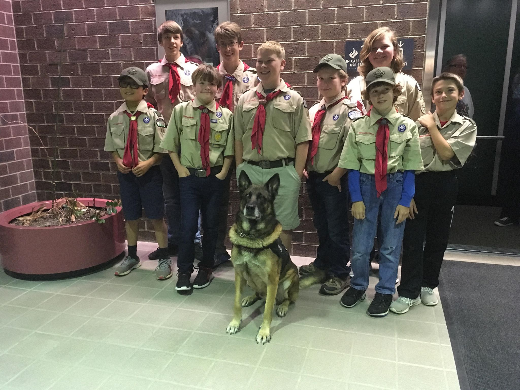 Jackson, a K9 with the RCPD, poses with a local boy scout troop celebrating his retirement