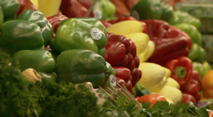 longer lasting longevity for produce